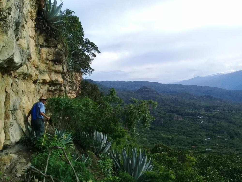 Colombie - Balade en forêt sèche et découverte de pictogrammes vers Barichara