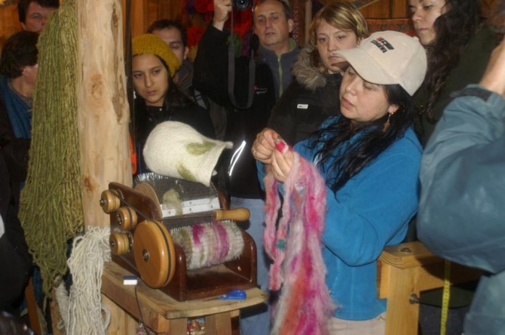 Chili - Atelier de médecine ancestrale au coeur de l'Araucanía à Pucón