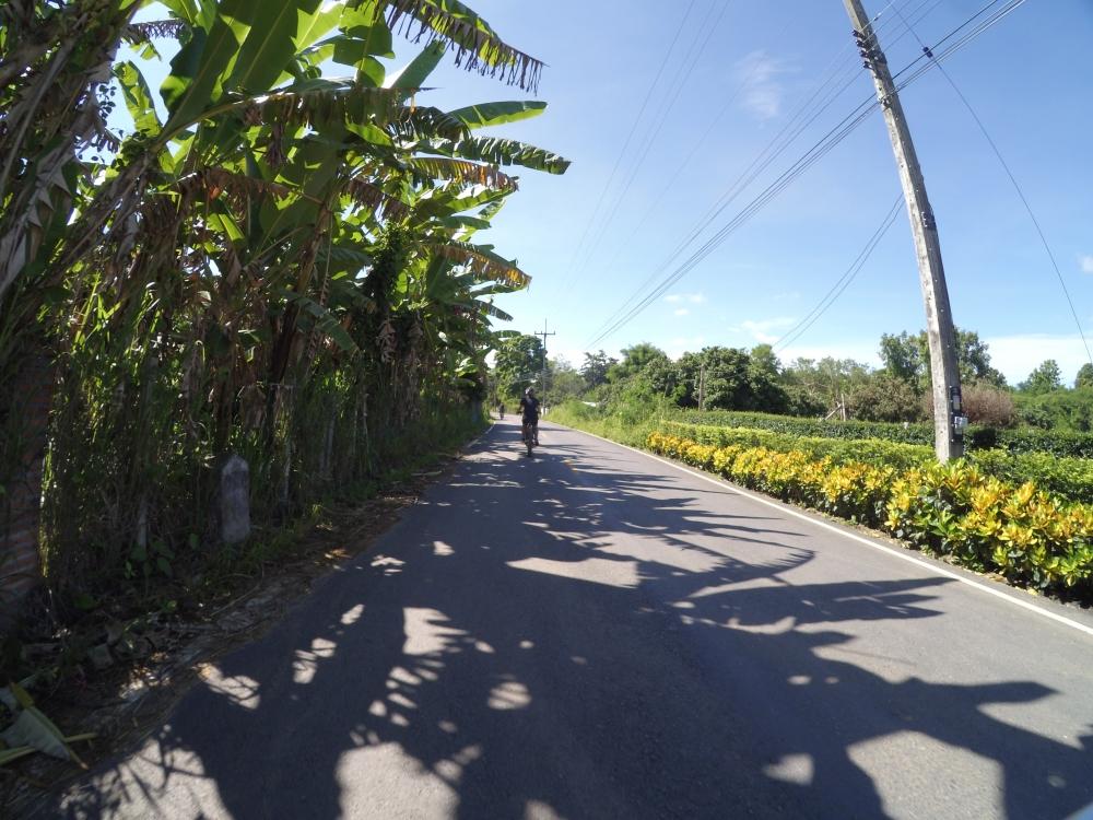 Thaïlande - Demi-journée dans la campagne de Chiang Mai en ebike