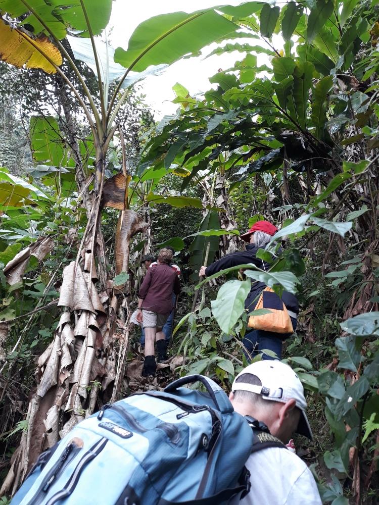 Vietnam - Artisanat et immersion en ecolodge au bord du lac Thac Ba