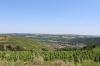 France - Visite du centre historique de Vienne et des vignes de la Côte-Rôtie