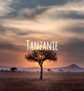 image de la Tanzanie pour idée de voyage durable dans le monde