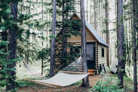maison dans la forêt pour slow tourisme