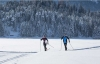 From Rovaniemi: Lapland Cross-Country Skiing Tour