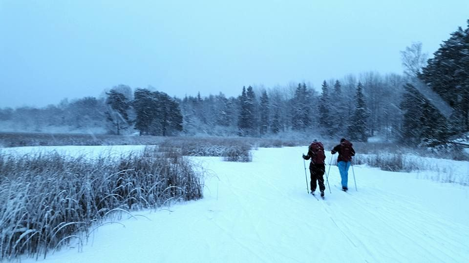 Cross Country Private Skiing in Nacka Nature Reserve, close to Stockholm