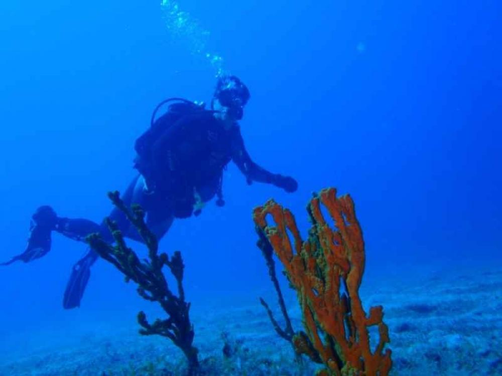 Karystos: Discover Scuba Diving Course - 2020