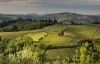 From Rome: Frascati & Castelli Romani Private Wine Tasting Tour - 2020