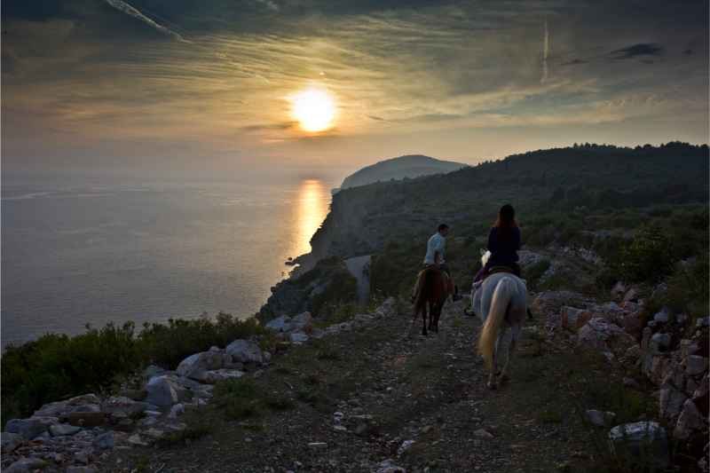 Dubrovnik Horse Riding: Half-day Horse Riding Tour from Dubrovnik