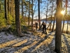 Stockholm Bike Tour: 5-hour Mountain Bike Tour Near Stockholm