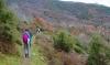 Pelion Mountain Herbs and Flowers Hiking Tour