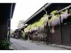 Shirakawa go Private Day Tour from Takayama