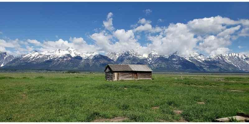 Grand Teton and Yellowstone 5 Day 4 Night Wildlife Guided Tour