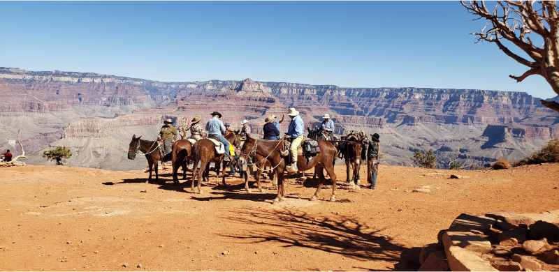 Zion, Bryce, Antelope and Grand Canyon 5 days Guided Tour