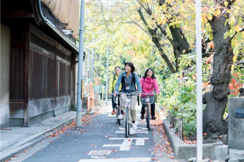 Kyoto Cycling Tour - A  Guided Backstreet Cycling Experience