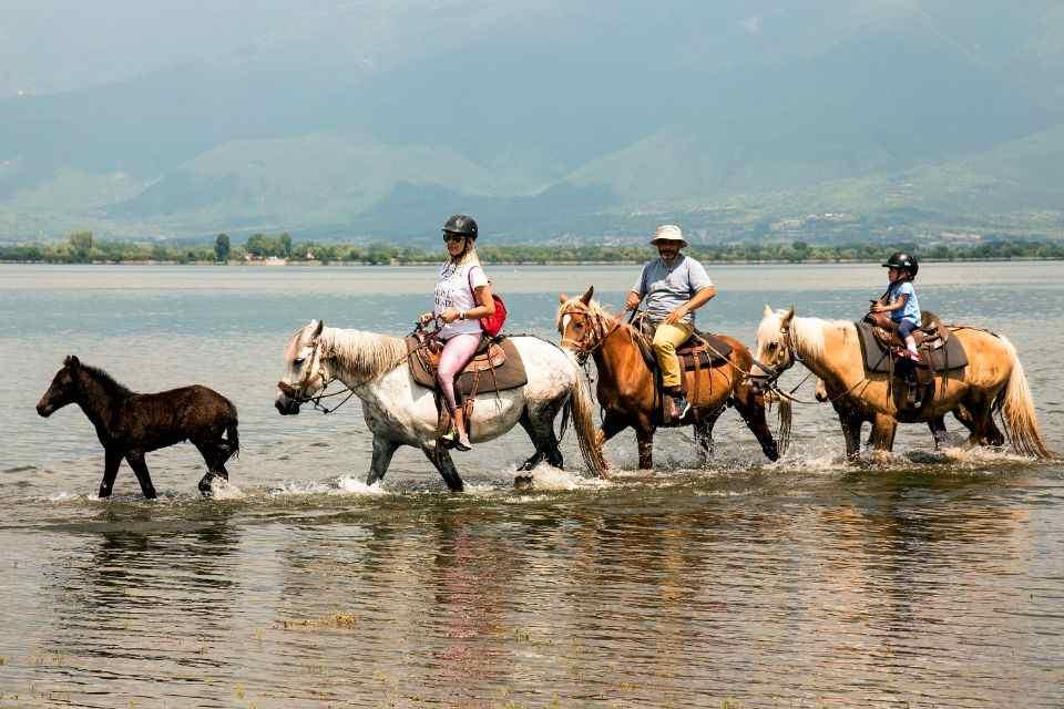 Lake Kerkini: 2-hour Lake Kerkini Horse Riding Tour