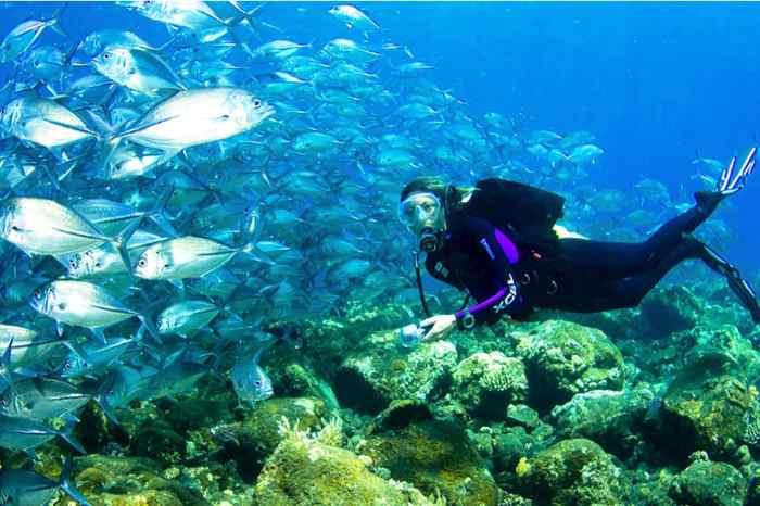 Kusadasi Scuba Diving: 4-hour Scuba Diving Class for Beginners from Kusadasi