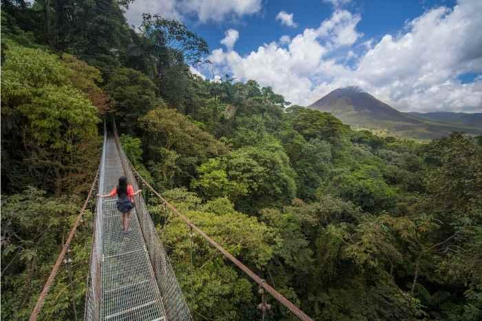 Arenal National Park: 4-hour Hanging Bridges Small Group Tour