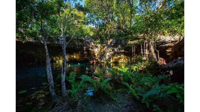 Cenotes Tour: 6-hour Cenotes Adventure Tour from Tulum