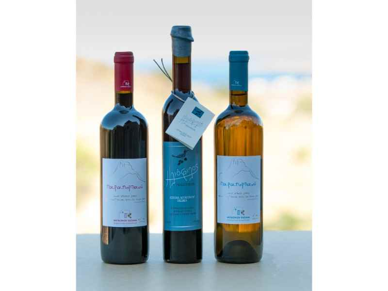 Mykonos Vineyard Free Tour