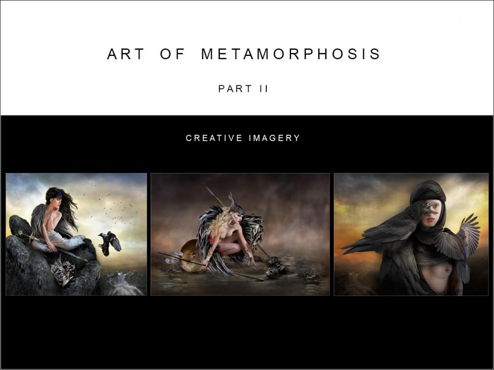Art of Metamorphosis part II