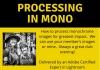 Processing in mono