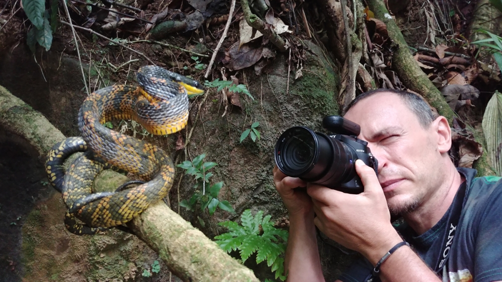 Costa Rica - Amphibian and reptile photography