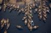 Bangladesh - Remote Drone Shoot Boat yards