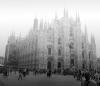 Italy - Tuscany, Milan and Bolgheri.