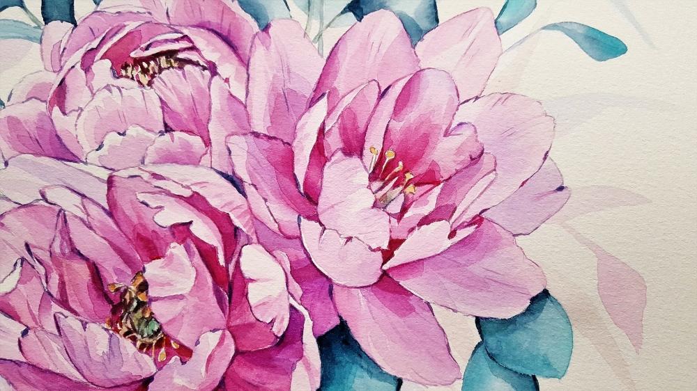 Cours de Peinture Aquarelle (x28)