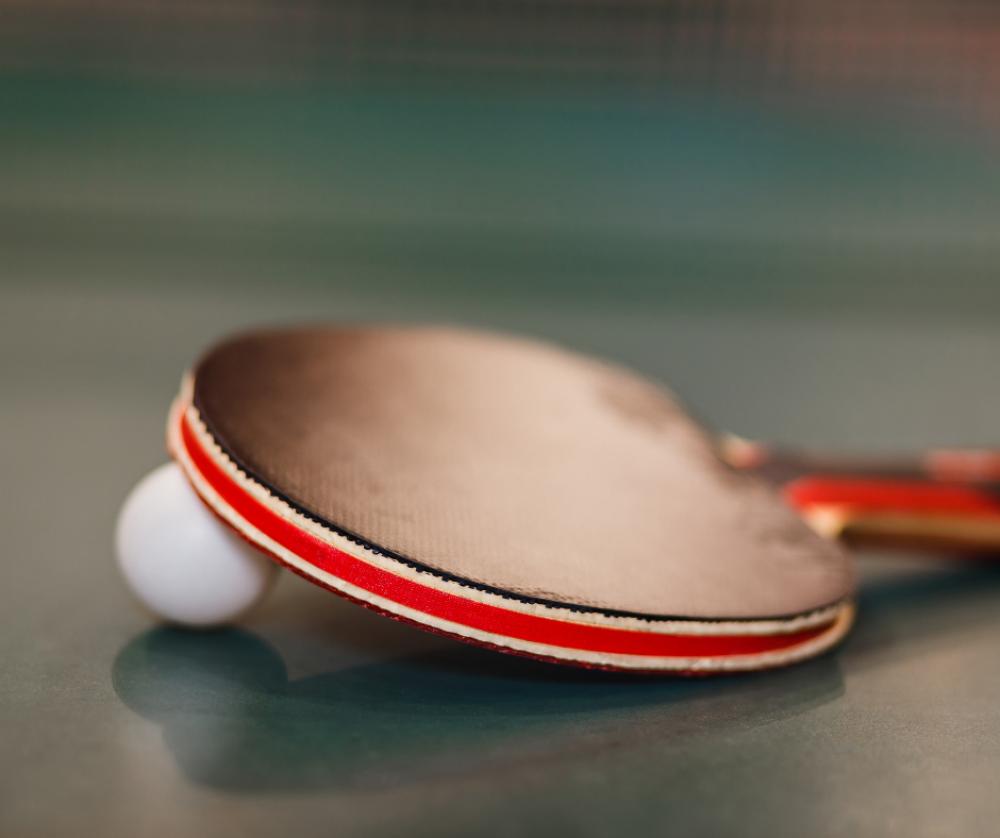 Cours Adultes de Tennis de Table - Loisirs