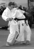 Self Defense Etudiants/Ados (2cours hebdomadaires x 2heures)