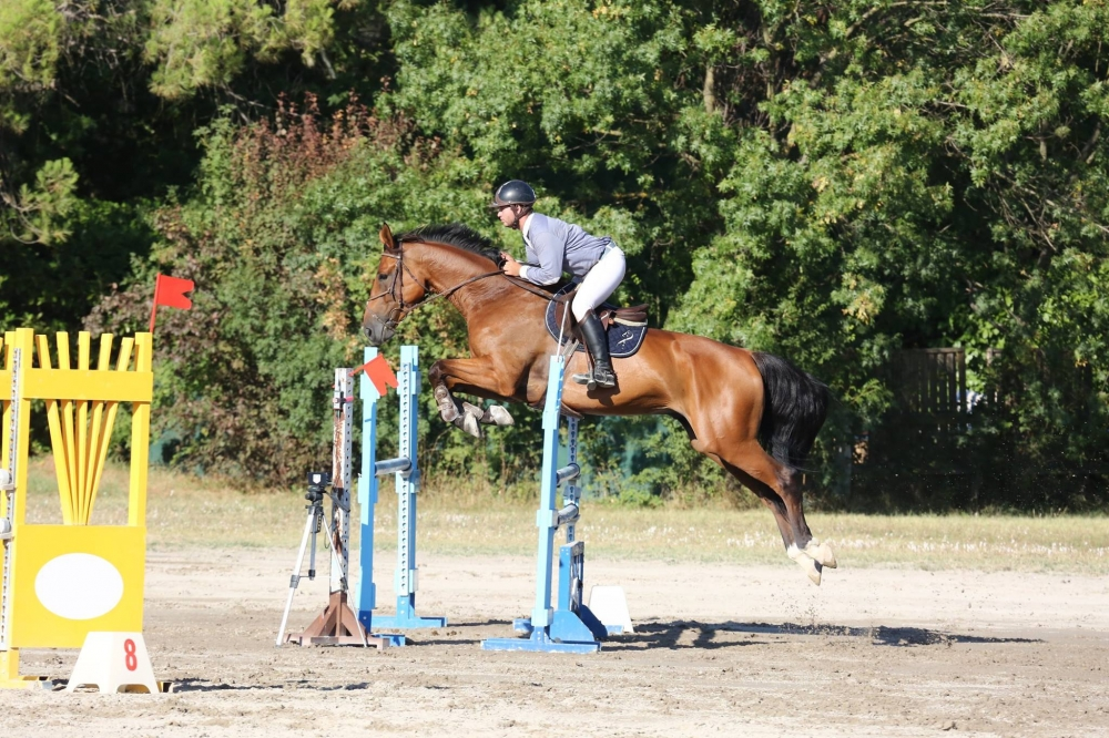 Cours d'Équitation Adultes - Galops 5,6 et 7 - (x10) 3 mois