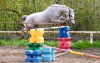 Cours d'Équitation Enfants- Galops 3 et 4 - (x10) 3 mois