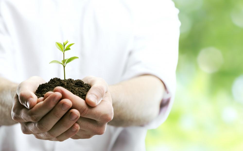 Développement personnel - Connaissance de soi
