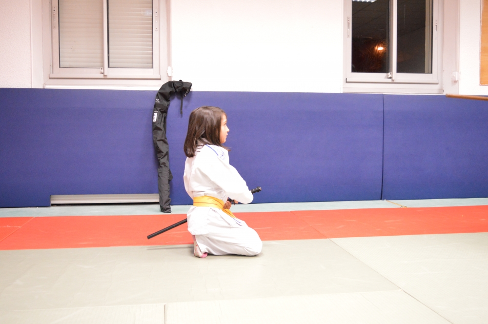 Aikido et aikitaiso - Enfants/Ado