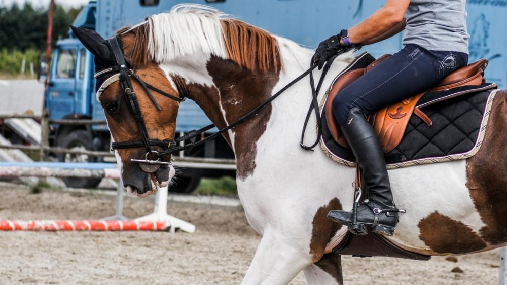 Semaine - Equitation Initiation Galop 1-4