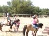 Stage d'équitation
