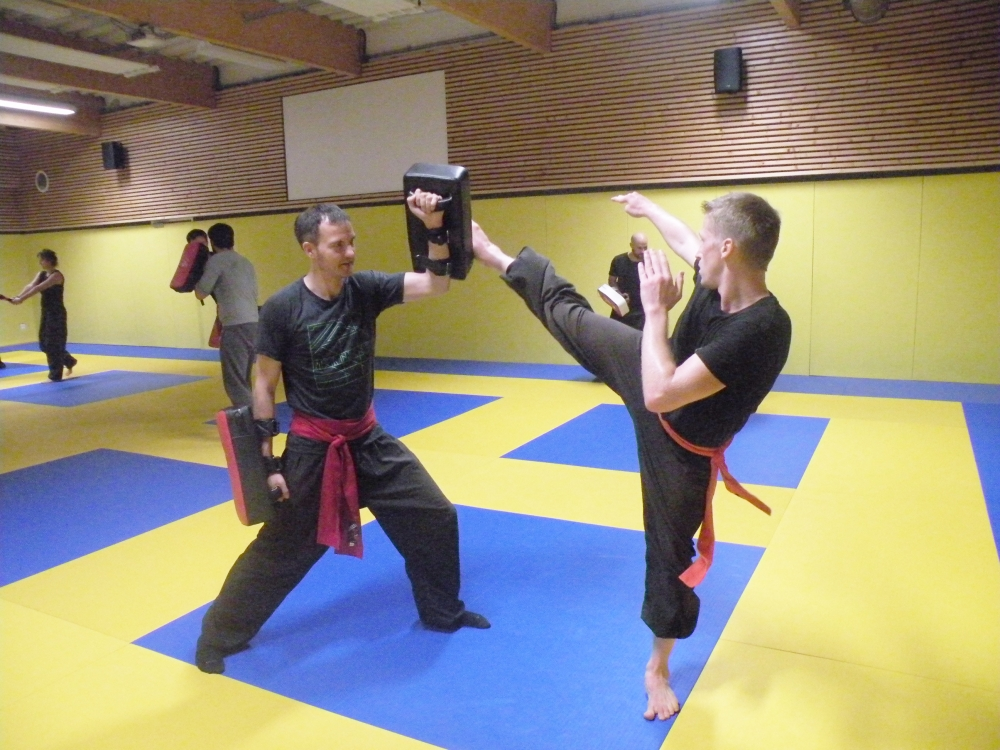 Cours de Kung-fu adultes et enfants (3 cours hebdomadaires)