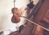Cours individuel Violoncelle - Trimestre
