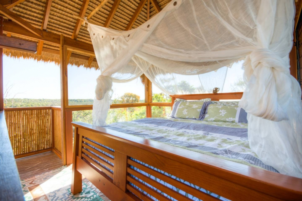 Noosa Tree Top Eco Retreat