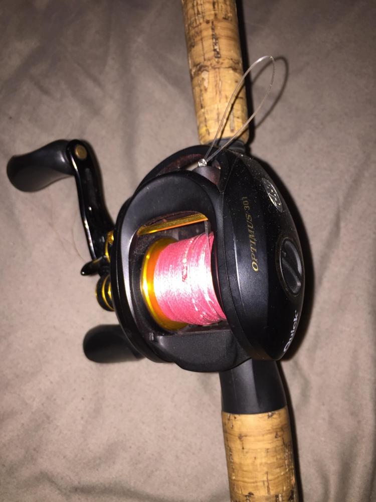 Ensemble Big bait Abu Garcia Svartzonker / Dam Quick Optimus 301