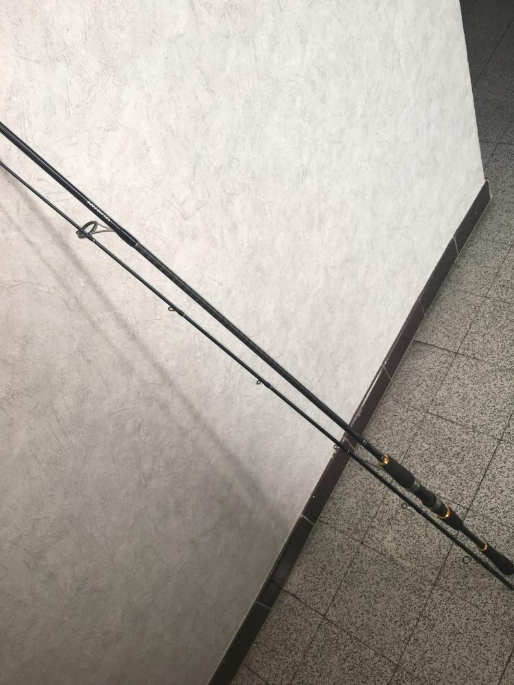 Canne à leurre daiwa legalis seabass (2m40)