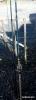 Canne carbone Balbuzard + moulinet offert