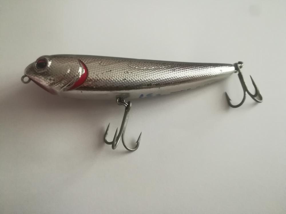 poisson nageur caperlan