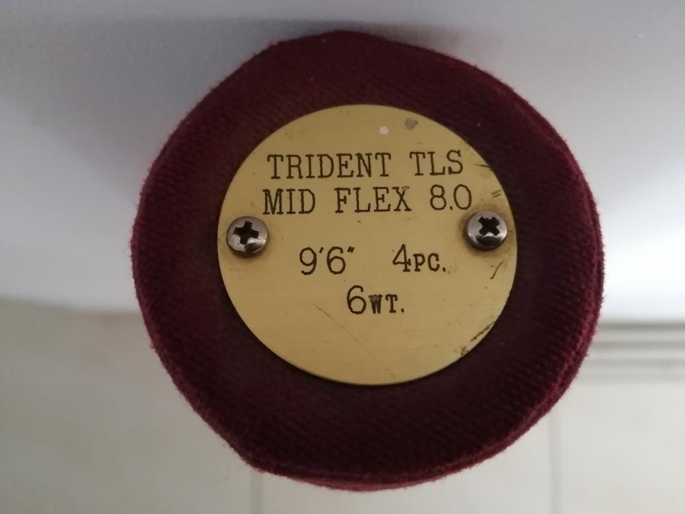 Canne mouche Trident TLS 9.6 pieds soie de 6