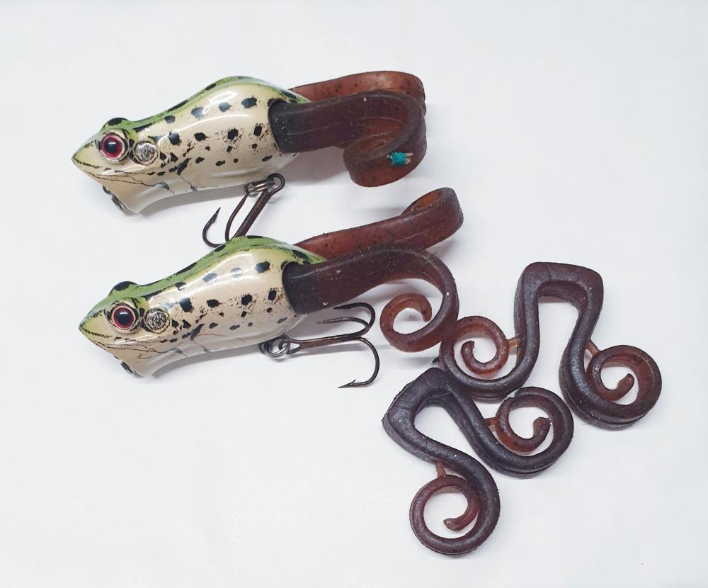 Frogs Berkley