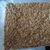 Amorce carpe chenevis blé maïs