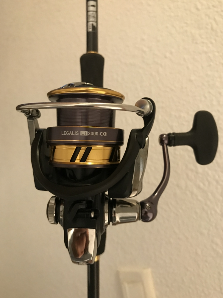 COMBO SPINNING FULL DAIWA : STEEZ AGS + LEGALIS