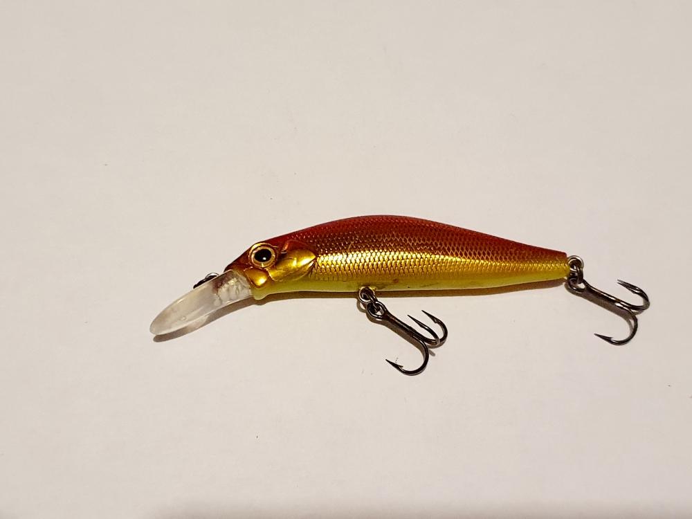 Jackson Kanade 6cm