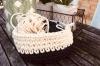 Un atelier débutant tricot - Paris 14e